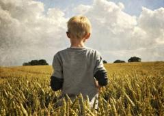 россия, сельское хозяйство, пшеница, экспорт, продовольствие, китай