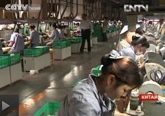 китай, инвалиды, бизнес, безработица, работа в китае