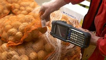 овощи фрукты импорт китай турция