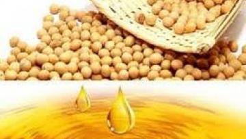 Закупаем масло соевое нерафинированное ГОСТ 31760-2012 для поставок в Китай