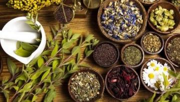 Продам в Китай травы Алтая, сборы, продукцию на основе трав